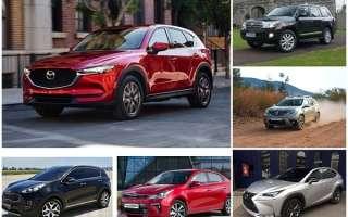 Рейтинг: самые угоняемые и не угоняемые автомобили в России